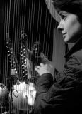 Catrin & Seckou Live © Andy Morgan 4